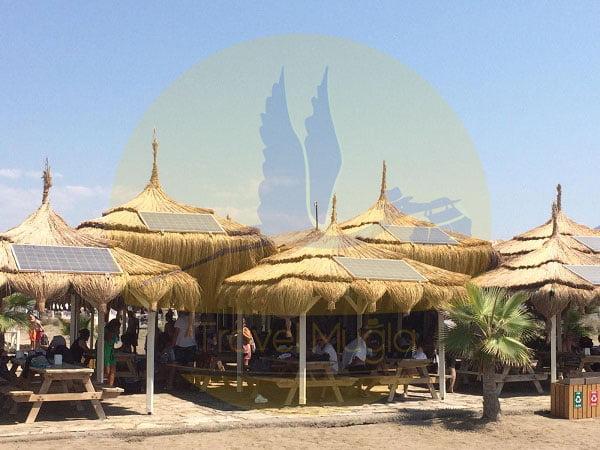 Köyceğiz-Tekne-Turu-İztuzu-Plajı-travelmugla-3