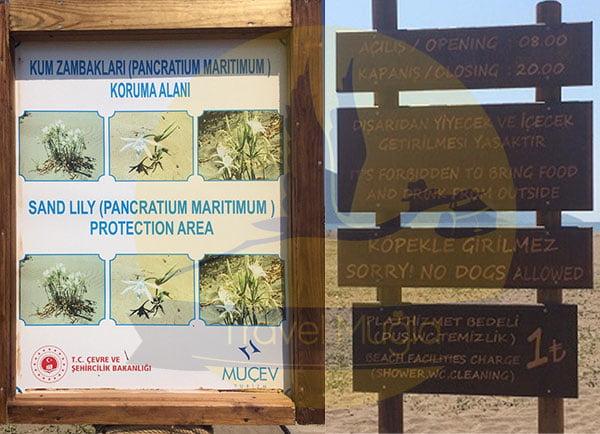 Köyceğiz-Tekne-Turu-İztuzu-Plajı-travelmugla-5